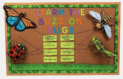 Bugs & Butterflies Bulletin Board